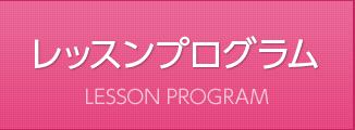 レッスンプログラム